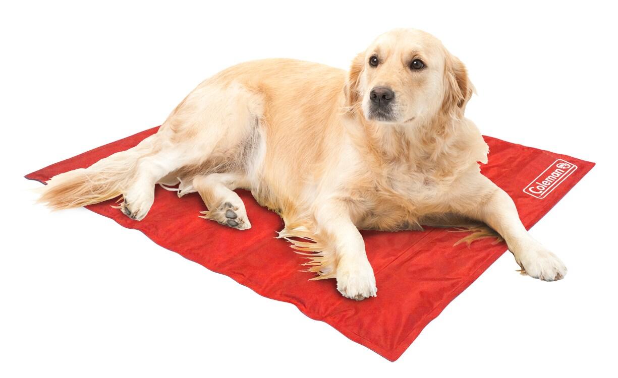 Coleman Comfort Large Cooling Gel Pet Pad