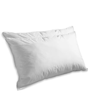 Elegant Comfort 1200-Thread Count Goose Feather Pillow (Set of 2)