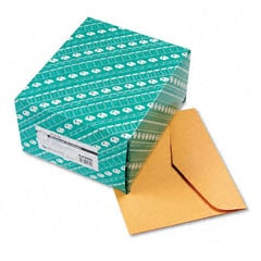 Document Envelopes - 10 x 12 (100/Box)