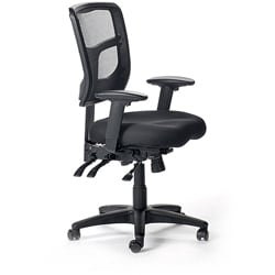 Ergo Mesh Medium Back Task Chair