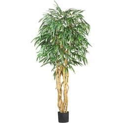 Silk Weeping Ficus 6-foot Tree 3891600
