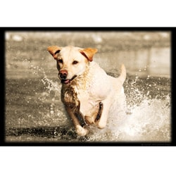 Upstream Images Yellow Lab Static Wall Graphic