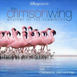 Soundtrack - Crimson Wing: Mystery of The Flamingos (OST) 5441050