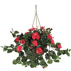 Hibiscus Hanging Basket 6102925