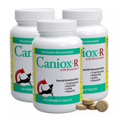 Caniox-R 60-tablet Dog Supplement (Pack of 3)