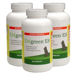 Urigreen 250 Extra Strength Pet Tablets (Pack of 3) 7039333