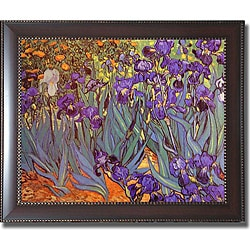 Vincent Van Gogh 'Iris Garden' Framed Canvas Art