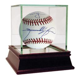 Steiner Sports 500 Home Run MLB Baseball