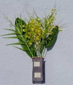 6 Stems Oncidium Orchids