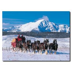 'Clydesdales in Snow Covered Mountains'Canvas Art