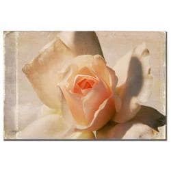 Lois Bryan 'Textured White Rose' Canvas Art