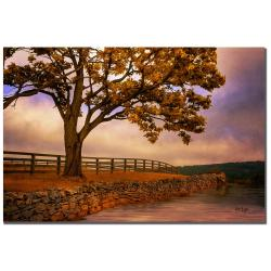 Lois Bryan 'One Tree Hill' Canvas Art