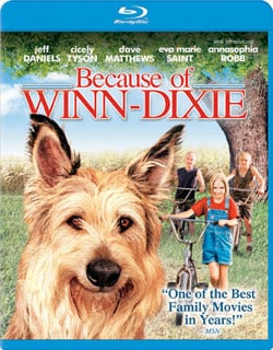 Because of Winn Dixie (Blu-ray Disc) 7666932