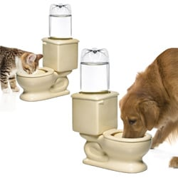 Refilling Toilet Water Bowl 7697417