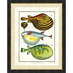 'Tropical Fish Print II' Framed Print