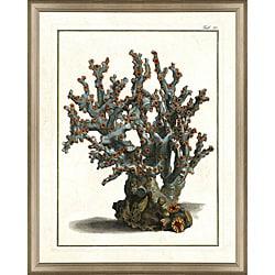 'Coral Print II' Framed Print
