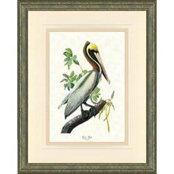 'Audobon Bird Print I' Framed Print