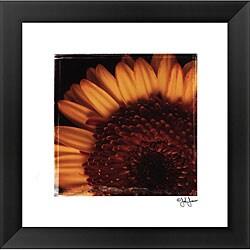 John Jones 'Beautiful Burst' Framed Print Art 7905430
