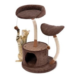 Cat Life 2-level Lounger Activity Center
