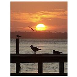 Orange Cat Art Jill M. Davis 'Seagulls at Sunset' Photographic Print