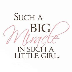 Vinyl Attraction 'Such a Big Miracle' Nursery Decal