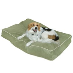 Busby Extra Small (18 x 24) Moss Dog Bed