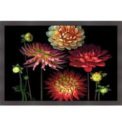 Pip Bloomfield 'Dahlia Garden' Framed Print Art