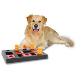 Chess Treat Dog Trainer