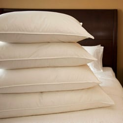 Extra-firm Cambric Cotton 600 Fill Power White Goose Down Pillow (As Is Item)