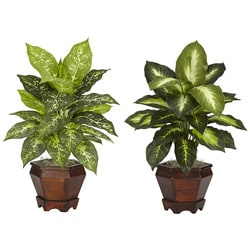 Dieffenbachia with Wood Vase Polyester Plant (Set of 2) 8466172