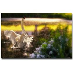 Lois Bryan 'Swan Lake' Canvas Art