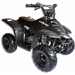 Trailrover Black 110cc Automatic Transmission ATV