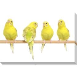 Yellow Budgie Birds Oversized Gallery Wrapped Canvas