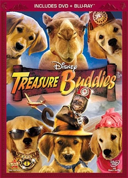 Treasure Buddies (Blu-ray/DVD) 8572646