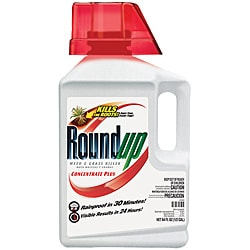 Roundup Weed & Grass Killer (64 oz)