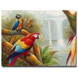 Rio 'Amazon Waterfall' Canvas Art