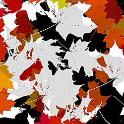 Ankan 'Leaves Falling 2' Gallery-wrapped Canvas 8906457