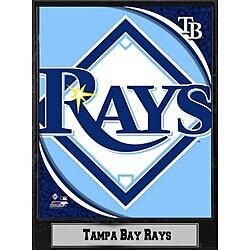Tampa Bay Rays 9x12 Logo Plaque 8946164