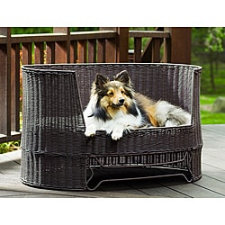 Wicker Dog Day Bed w/ Outdoor Cushion