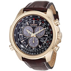 Citizen Men's Eco-Drive BL540303X Perpetual Calendar Watch
