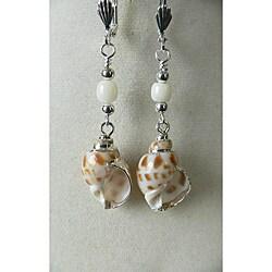 Taylor' Shell Earrings 9056198