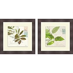 Deborah Schenck 'Vine Leaf & Trailing Leaf' Framed Print