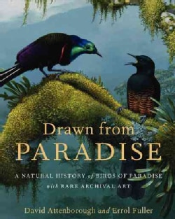 Drawn From Paradise: The Natural History, Art and Discovery of the Birds of Paradise (Hardcover) 9125424