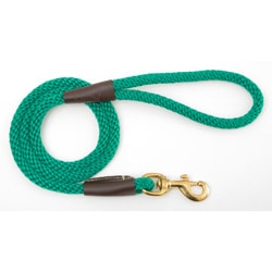Kelly Green Snap Leash