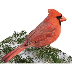Paper House Red Cardinal 300-piece Jigsaw Shaped Puzzle