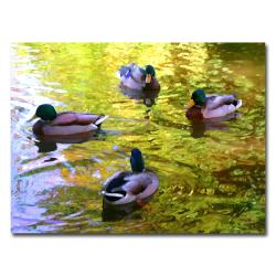 Amy Vangsgard 'Four Ducks on Pond' Canvas Art