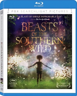 Beasts of the Southern Wild (Blu-ray/DVD) 9973986