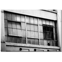 Patty Tuggle 'Open Windows' Canvas Art