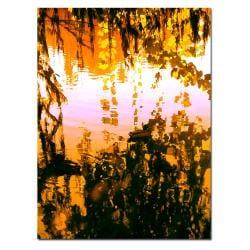 Amy Vangsgard 'Ducks in Morning Light' Canvas Art 7988068