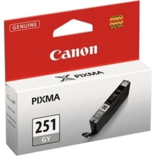 Canon CLI-251 GY Original Ink Cartridge - Gray 10660984